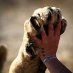 10 вопросов, когда вы расстроены, эмпатия ли это?