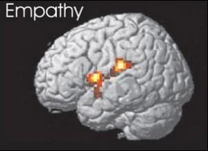 эмпатия